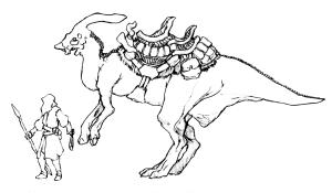 Crested Dragon saddled BW
